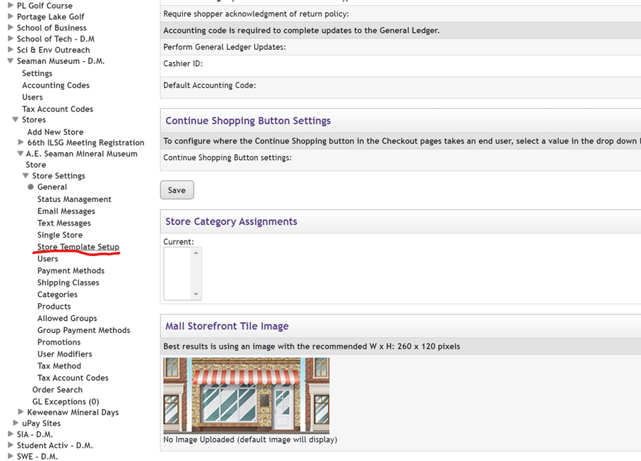store template setup option in left menu