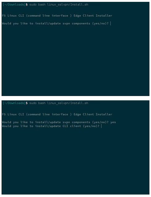 terminal window - bash