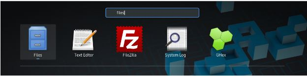Type files in search box
